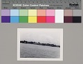 View [Shrimp fleets and boats, Morgan City], circa 1943 digital asset number 0