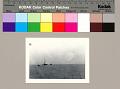 View [Oil derrick and shrimp boats on Lake Pelto], circa 1943 digital asset number 1