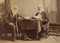 View William Cullen Bryant and Peter Cooper digital asset number 0