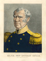 View Zachary Taylor digital asset number 0
