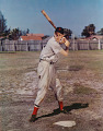 View Ted Williams digital asset number 0