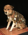 View Owney the dog digital asset number 0