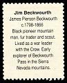 View 29c Jim Beckwourth mini sheet single digital asset number 1