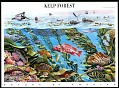 View 44c Kelp Forest Pane of ten digital asset number 0