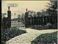 View [Gibraltar]: tulip border and wrought iron gate. digital asset: [Gibraltar]: tulip border and wrought iron gate.: [between 1920 and 1922]