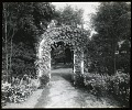 View [Edgewood (MD)]: an arbor covered in climbing plants. digital asset: [Edgewood (MD)] [lantern slide]: an arbor covered in climbing plants.