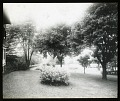 View [Edgewood (MD)]: lawn, trees, and shrubs, with the house barely visible on the left. digital asset: [Edgewood (MD)] [lantern slide]: lawn, trees, and shrubs, with the house barely visible on the left.