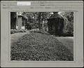 View [Breeze Hill]: Ground cover plants in fore-front with vine covered gazebo in background. digital asset: [Breeze Hill] [photographic print]: Ground cover plants in fore-front with vine covered gazebo in background.