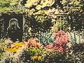 View [Woodruff Garden] digital asset: [Woodruff Garden]: [1930?]