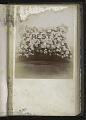 View <I>Album, floral frames</I> digital asset number 32