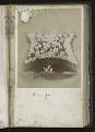View <I>Album, floral frames</I> digital asset number 34
