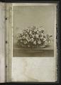 View <I>Album, floral frames</I> digital asset number 19