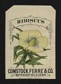 View <I>Seed packet, Comstock, Ferre, & Co., hibiscus africanus</I> digital asset number 0