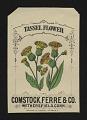 View <I>Seed packet, Comstock, Ferre, & Co., tassel flower</I> digital asset number 0