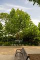 View Asimina triloba digital asset: Photographed by: Hannele Lahti