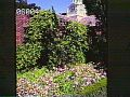 View [Filoli]: the carriage house and its clock tower. digital asset: [Filoli]: the carriage house and its clock tower.: 1985 May.