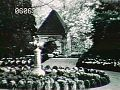 View [Henry Francis du Pont Winterthur Museum Gardens]: boxwood circle. digital asset: [Henry Francis du Pont Winterthur Museum Gardens]: boxwood circle.: 1930.