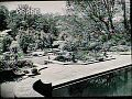 View [Henry Francis du Pont Winterthur Museum Gardens]: architectural steps and masonry. digital asset: [Henry Francis du Pont Winterthur Museum Gardens]: architectural steps and masonry.: 1930.