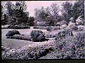 View [Henry Francis du Pont Winterthur Museum Gardens]: Sundial Garden present site. digital asset: [Henry Francis du Pont Winterthur Museum Gardens]: Sundial Garden present site.: 1930.