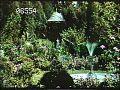 View [Haven Wood]: a fountain, gazebo, and dense plantings. digital asset: [Haven Wood]: a fountain, gazebo, and dense plantings.: 1984 Oct.