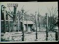 View [Naumkeag]: the Afternoon Garden around the time of its installation. digital asset: [Naumkeag]: the Afternoon Garden around the time of its installation.: [1928?]