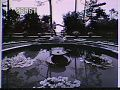 View [The Chimneys]: circular lilly pond with fountain with trees, trellis, and potted plants in background. digital asset: [The Chimneys]: circular lilly pond with fountain with trees, trellis, and potted plants in background.: [1910?]