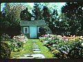 View Howe Garden digital asset: Howe Garden: 1950s-1960s