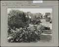 View [Seaverns Garden] digital asset: [Seavern Garden] [photoprint]