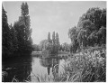 View [Royal Botanic Gardens, Kew]: the Lake. digital asset: [Royal Botanic Gardens, Kew] [glass negatives]: the Lake.