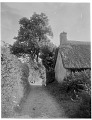 View [Miscellaneous Sites in Branscombe, Devon, England]: an unidentified roadway and cottage in Branscombe, showing typical English hedgerows. digital asset: [Miscellaneous Sites in Branscombe, Devon, England] [glass negative]: an unidentified roadway and cottage in Branscombe, showing typical English hedgerows.