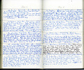 View The Gertrude Farrington diaries digital asset number 5