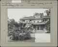 View Glen St. Mary Nurseries: Palm, variety Washingtonia robusta digital asset: Glen St. Mary Nurseries Co. [photoprint]