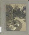 View Hunnewell Pinetum: Garden digital asset: Hunnewell Pinetum [photoprint]