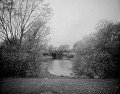 View [The Riverway]: looking toward a multi-arched bridge. digital asset: [The Riverway] [glass negative]: looking toward a multi-arched bridge.