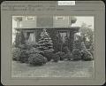 View Unidentified Garden in Ridgewood, New Jersey: Evergreens, foundation digital asset: Unidentified Garden in Ridgewood, New Jersey [photoprint]