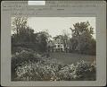 View [Nethermuir]: Deutzia gracilis digital asset: [Nethermuir] [photoprint]