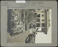 View Winfield digital asset: Winfield [photoprint]