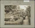 View Unidentified Garden in Hempstead, New York digital asset: Unidentified Garden in Hempstead, New York [photoprint]