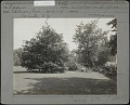 View Durand-Eastman Park digital asset: Durand-Eastman Park [photoprint]
