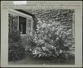 View Masonic Home digital asset: Masonic Home [photoprint]