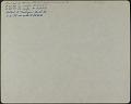 View [Miscellaneous Sites in Harrisburg, Pennsylvania]: Lonicera Japonica (Japanese honeysuckle) at 250 Hummel Street. digital asset: [Miscellaneous Sites in Harrisburg, Pennsylvania] [photographic print]: Lonicera Japonica (Japanese honeysuckle) at 250 Hummel Street.