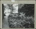 View Masengill Garden digital asset: Masengill Garden [photoprint]