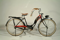 View Schwinn Panther Bicycle, 1953 digital asset number 0