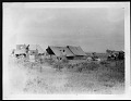 View Smithsonian-Chrysler Expedition to East Africa, 1926 digital asset: Camp site, 1926 [Image No. SIA2008-2301]