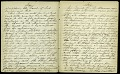 View Mary Henry Diary, 1864-1868 digital asset number 5
