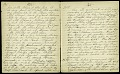 View Mary Henry Diary, 1864-1868 digital asset number 4