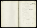 View Field notes, Death Valley Expedition, 1891 digital asset number 4