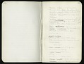 View Field notes, Death Valley Expedition, 1891 digital asset number 9