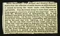 View Volume 2, 1867-1869 digital asset number 2