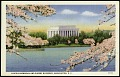 View Postcard of the Lincoln Memorial and Cherry Blossoms digital asset number 0